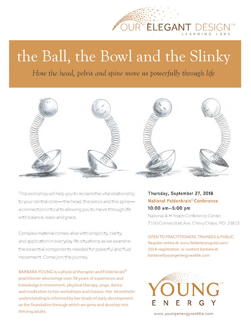 Young Energy | The Ball, The Bowl and the Slinky | September 2018
